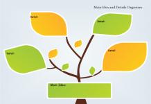 Graphic Organizer dùng trong đọc hiểu (Ảnh: Edraw)