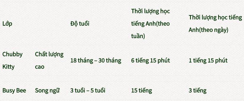Các lớp học trường mầm non song ngữ Rising Star, quận Ba Đình, Hà Nội (Ảnh: website trường)