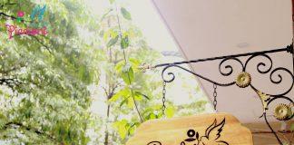 Cơ sở vật chất trường mầm non Piccioni - Tổ chim tại quận Đống Đa, Thanh Xuân, Hà Nội (Ảnh: FB Trường)