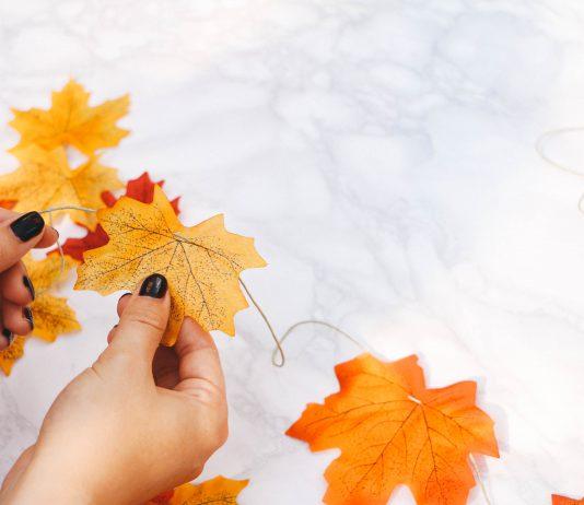 Gợi ý 5 trò chơi với lá mùa thu cho bé (Ảnh: One Pleasant Day)