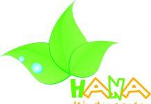 trường mầm non Hana tại quận Hà Đông, Hà Nội (Ảnh: FB trường)