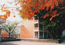 Trường THCS Ngoại Ngữ, quận Cầu Giấy, HN (Ảnh: Hoa Học Trò)