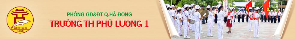 Trường Tiểu học công lập quận Hà Đông - Phú Lương I (Ảnh: website nhà trường)