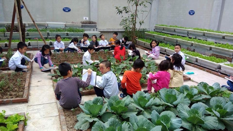 Cơ sở vật chất Tiểu học Chu Văn An, quận Tây Hồ, Hà Nội (Ảnh: website trường)