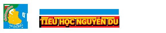 Trường Tiểu học công lập quận Hà Đông - Nguyễn Du (Ảnh: website nhà trường)