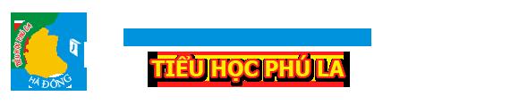 Trường Tiểu học công lập quận Hà Đông - Phú La (Ảnh: website nhà trường)