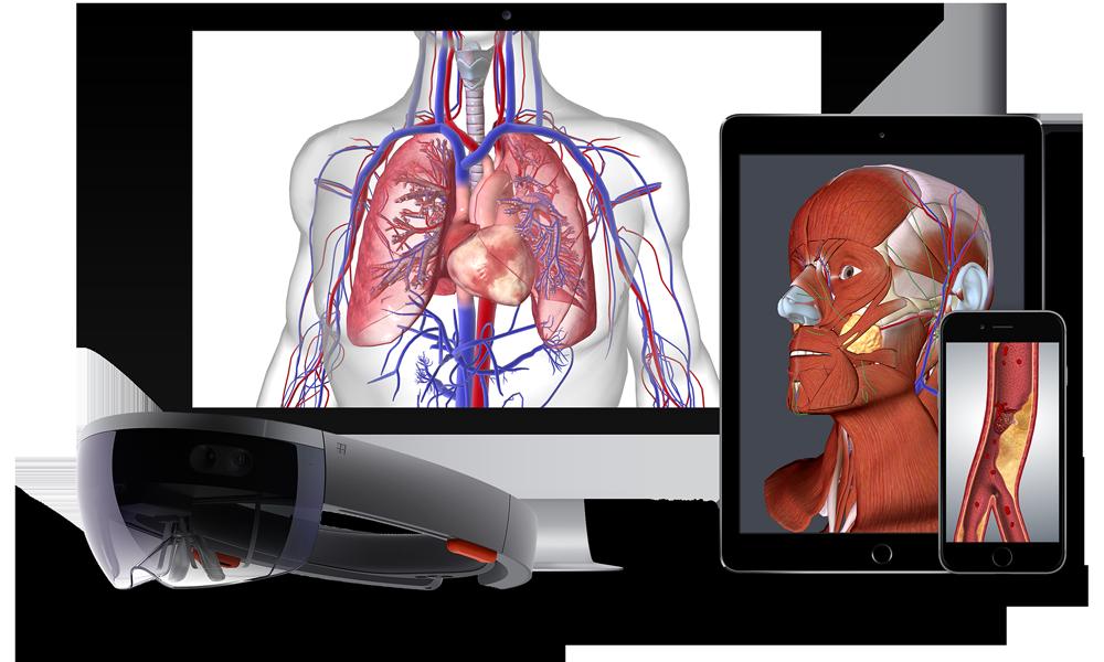 KooBits gợi ý 5 website khoa học siêu thú vị cho trẻ (Ảnh: www.biodigital.com)