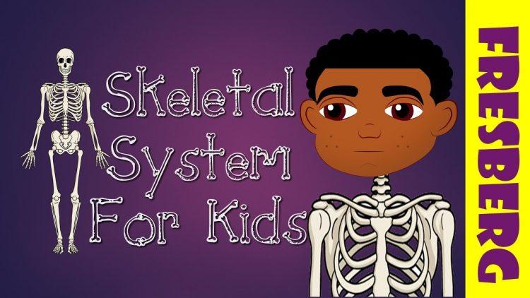 10 video YouTube nhất định phải xem khi học về hệ xương