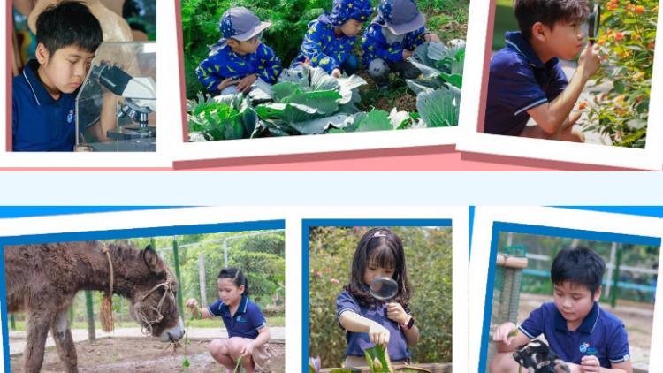 Eraschool – trường phổ thông liên cấp sinh thái  tại Hà Nội